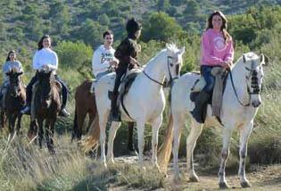 multiaventura caballos